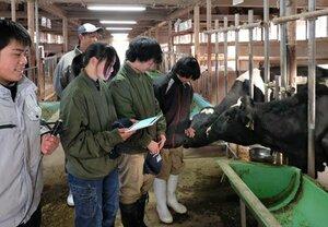 センサーやデータが送られるタブレット端末を持って牛を観察する生徒ら(京都府南丹市園部町・農芸高)