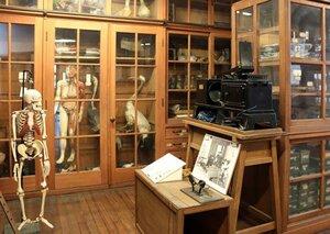 ツアーでは人体骨格や動物の剥製などが並ぶ旧豊郷小の理科準備室を見学できる(滋賀県豊郷町石畑)