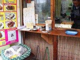 店先で眠るハスキーと、たこ焼きを焼く松田さん(滋賀県大津市)