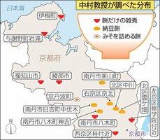 中村教授が調査した、京都府内の「餅だけ雑煮」「納豆餅」「みそを詰める餅」の分布