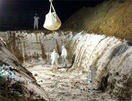 殺処分した豚を穴へ運び入れる県職員ら(6日午後7時ごろ、滋賀県日野町・県畜産技術振興センター)=滋賀県提供