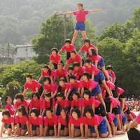 【資料写真】京都府内の小学校で披露された組み体操の7段ピラミッド(2011年撮影、画像は一部加工しています)
