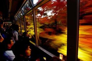 展望列車の車窓をネオンのように流れる紅葉(16日、京都市左京区)