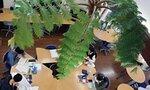 学習進度や関心に合わせた個別カリキュラムで学ぶ子どもたち(亀岡市・学びの森)