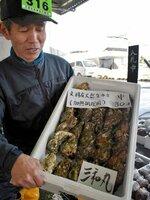 今季の初出荷が始まった「文珠産天然生カキ」(宮津市鶴賀・府漁協宮津地方卸売市場)