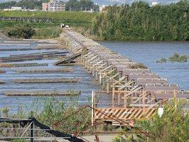 橋板が流出した流れ橋(木津川で京都府八幡市側から撮影)