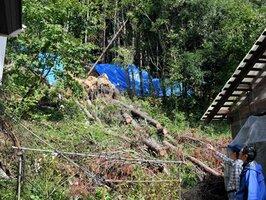 山裾の民家まで押し寄せた土砂や倒木。ガラスや物置が壊れる被害があった(宮津市日置)
