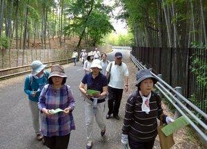 地図を手に歩き、改善点を確認する参加者(2018年5月、京都府向日市・竹の径)