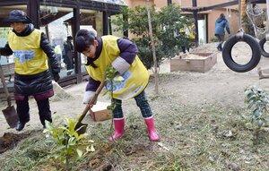ゴリラの舎内で木を植える参加者たち(京都市左京区・京都市動物園)