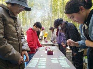 整備された竹林で百人一首を楽しむ参加者(京都府長岡京市粟生)