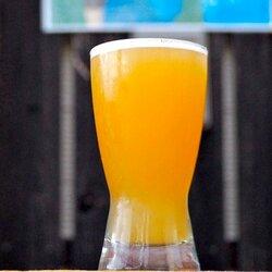 京都・亀岡産の大麦とホップでビール、限定販売「飲み口繊細」