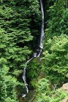 夏、緑に包まれる音谷の滝(京都府南丹市美山町)