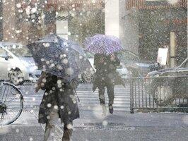 吹雪のなか傘を差して歩く人たち(26日午後3時20分、京都市中京区烏丸通丸太町)
