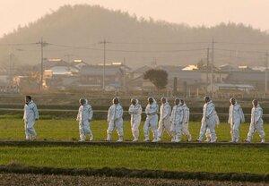 豚コレラの被害拡大を防ぐため、日没が迫る中でも防護服姿で作業に赴く滋賀県職員たち(2月6日、近江八幡市内)